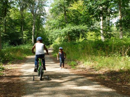 Faire du vélo dans la forêt