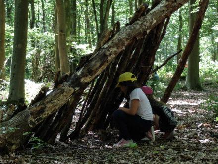 Se construire une cabane dans la forêt